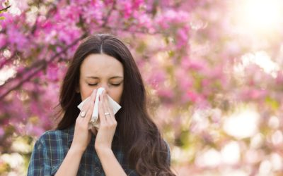 New HAYFEVER treatment in Geelong – intranasal B*t*x – no needles required!